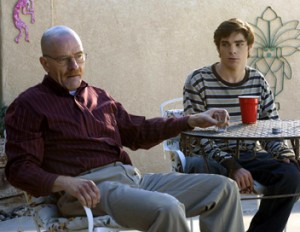 breaking-bad saison-2 episode-10-introspection